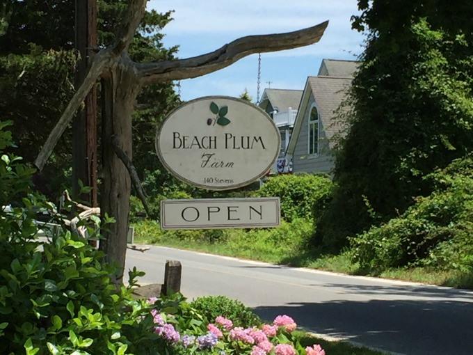 Beach Plum Sign